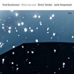 TORD GUSTAVSEN, SIMIN TANDER, JARLE VESPESTAD: WHAT WAS SAID