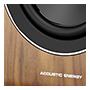 Acoustic Energy AE100